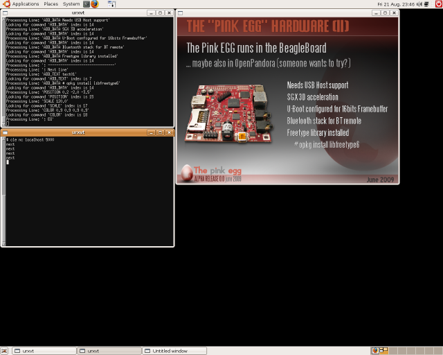 picoFlamingo Running in a x86 LinuxBox